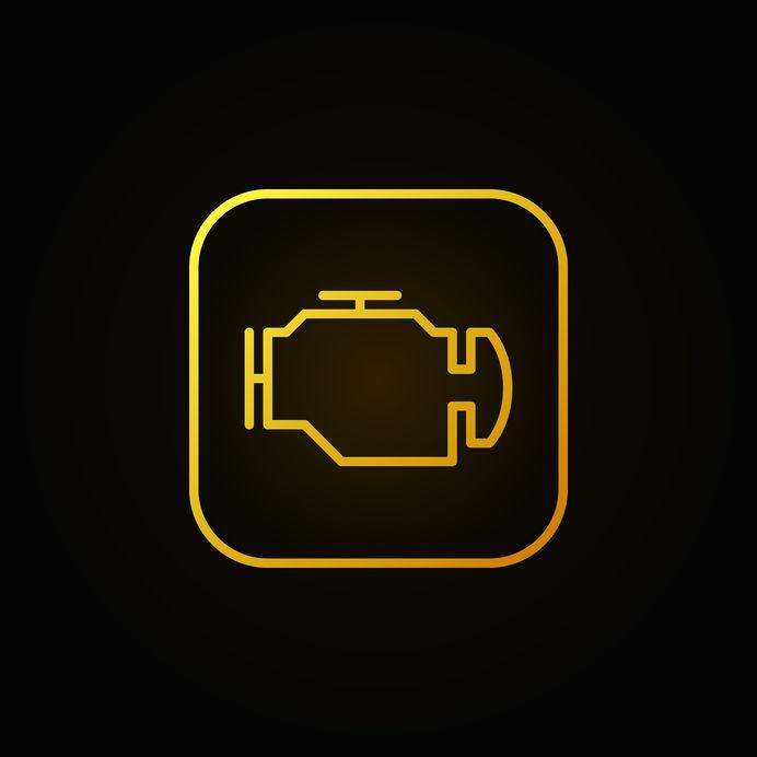 Check Engine Light Inspection